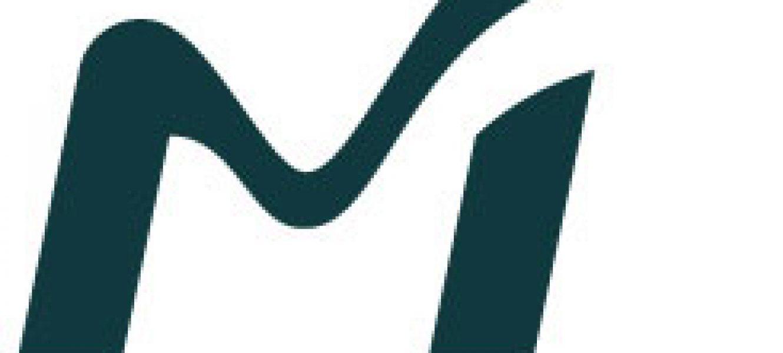 Mobilize.org's Mobilizer Academy to Host a Resolution SVC!